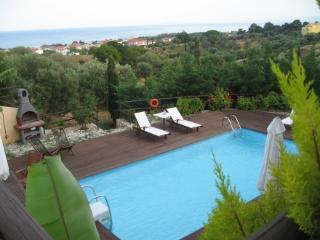 Bright 9 bedroom Skala Villa with Internet Access - Skala vacation rentals