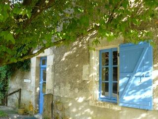 Perfect 6 bedroom Farmhouse Barn in Saint-Savin - Saint-Savin vacation rentals