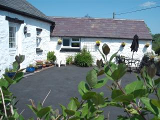 Sunny Cottage with Internet Access and Dishwasher - Llandysul vacation rentals