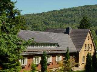 Comfortable 2 bedroom Condo in Jonsdorf with Internet Access - Jonsdorf vacation rentals