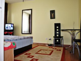 Dorobanti apartament, sleeps 2. - Bucharest vacation rentals