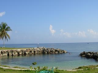 Hidden Coral - Tower Isle vacation rentals