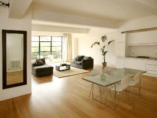 Luxury Central London apartment- sleeps 6. - London vacation rentals