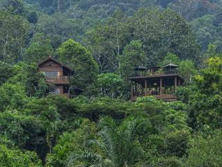 Templer Park Rainforest Retreat - Villa - Rawang vacation rentals