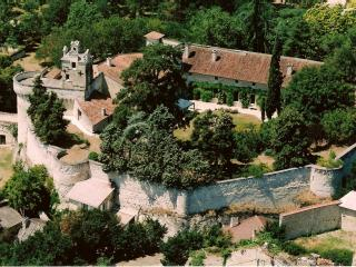 Chateau de Ranton - Chinon vacation rentals