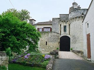 Charming Castle with Internet Access and Dishwasher - Chinon vacation rentals