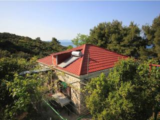 3 bedroom House with Parking Space in Necujam - Necujam vacation rentals