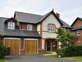 Newly Built House in Chester - Chester vacation rentals