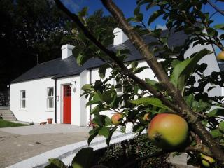 2 bedroom Cottage with Internet Access in Warrenpoint - Warrenpoint vacation rentals