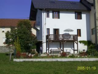 Fantastic House in Small Mountain Village - Hotonnes vacation rentals