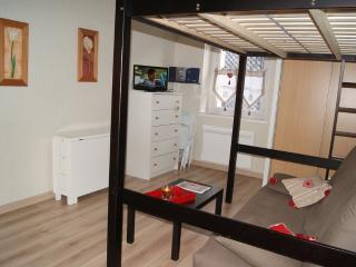 Charmant studio dans immeuble de caractère - Le Mont-Dore vacation rentals
