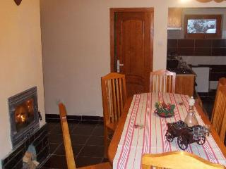 Bright 4 bedroom Chalet in Tirgu Mures - Tirgu Mures vacation rentals