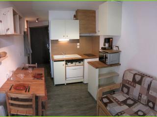 Nice Samoëns Studio rental with Elevator Access - Samoëns vacation rentals