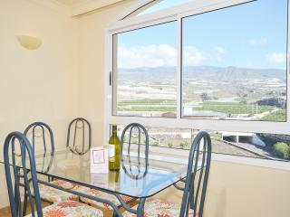 Dolphins Tale is a Luxury Apartment with free Wifi - Playa San Juan vacation rentals