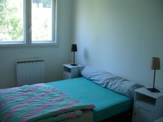 chambre dans bel appartement - Lyon vacation rentals