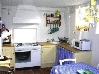 Beautiful Mayenne Cottage rental with A/C - Mayenne vacation rentals