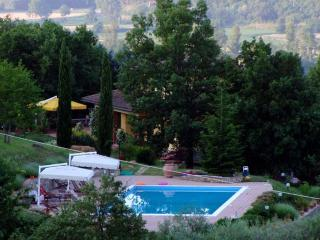 Beautiful Villa with Internet Access and Central Heating - Castel San Niccolo vacation rentals