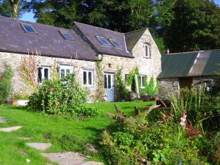 Felindyrch - beautiful rural stone barn conversion - Mynachlogddu vacation rentals
