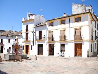 Beautiful house with terrace - Cordoba vacation rentals