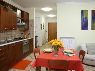 Cozy 2 bedroom Condo in Fiuggi - Fiuggi vacation rentals
