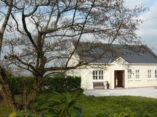 4 bedroom House with Internet Access in Dingle - Dingle vacation rentals