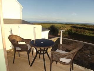 1 bedroom Cottage with Internet Access in Saint Davids - Saint Davids vacation rentals