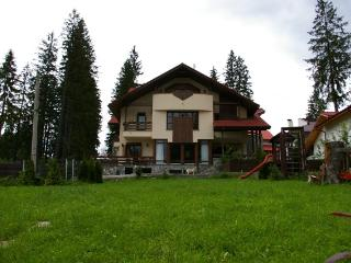 Transylvanian Villa - Brasov vacation rentals