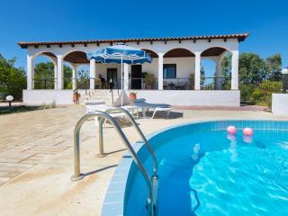 Minas Villa up to 9 - Gennadi vacation rentals