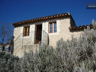 Private gite and exclusive use of swimming pool - Gaillac vacation rentals
