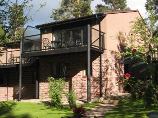 Nice 1 bedroom Lodge in Ballater with Internet Access - Ballater vacation rentals