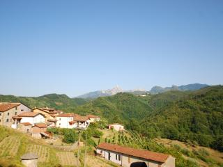 Apartment: Lunigiana (Tuscany) - Fivizzano vacation rentals
