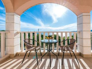 Beautiful 1 bedroom Apartment in Plat with Internet Access - Plat vacation rentals
