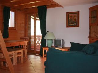 Alpine Apartment - Pralognan-la-Vanoise vacation rentals
