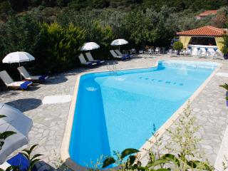 Comfortable Resort with Internet Access and Grill in Potami - Potami vacation rentals