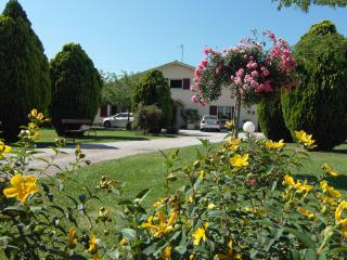Nice Guest house with Internet Access and Balcony - Graulhet vacation rentals