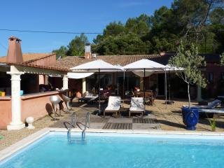 Nice Guest house with Internet Access and Dishwasher - Pignans vacation rentals