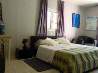 1 bedroom Guest house with Internet Access in Pignans - Pignans vacation rentals