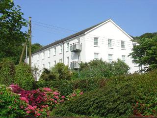 Nice 2 bedroom Condo in Porthcurno - Porthcurno vacation rentals