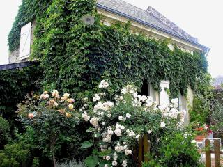 La Maison d'Amis - Chinon vacation rentals