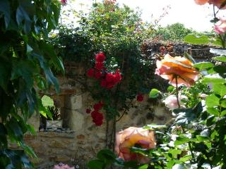 Romantic 1 bedroom Chinon B&B with Internet Access - Chinon vacation rentals