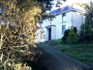 Holiday Home in Co Leitrim - Carrigallen vacation rentals