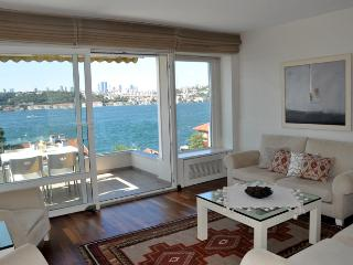Flat with an amazing view - Istanbul vacation rentals