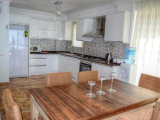 Luxury holiday Villa With sea view, sleeps8:  068 - Antalya Province vacation rentals