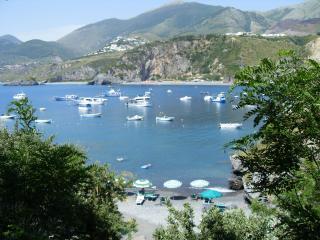 1 bedroom Apartment with Garden in San Nicola Arcella - San Nicola Arcella vacation rentals