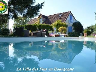 La Villa des Pins Bourgogne entre Loire et Morvan - Decize vacation rentals