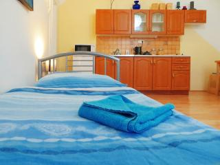 1 - BEDROOM APARTMENT - Prague vacation rentals