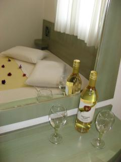 Charming 15 bedroom Resort in Nikiti - Nikiti vacation rentals
