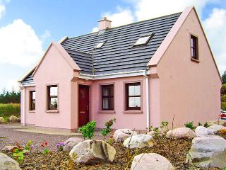 Nice Cottage with Parking Space and DVD Player - Waterville vacation rentals