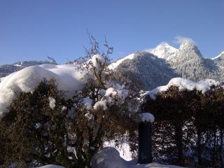 Chalet Betula, a charming alpine retreat. - Zweisimmen vacation rentals
