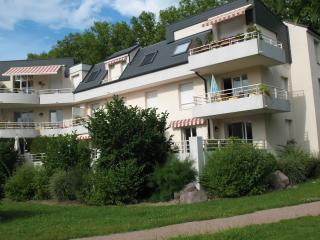 Gîte des Vergers aux portes de Strasbourg - Illkirch vacation rentals